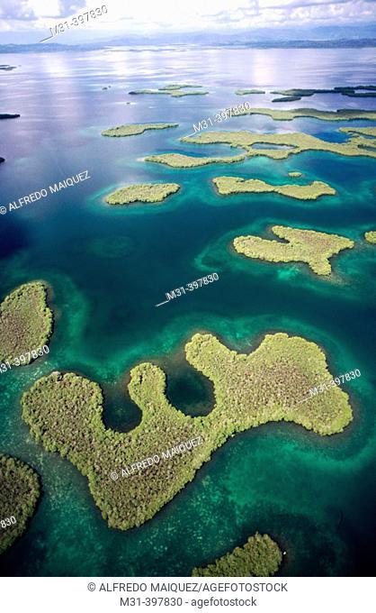 Bastimentos Nacional Marine Park. Mangroves. Bocas del Toro archipelago. Caribbean sea. Panama
