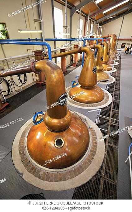 Stills, Glenfiddich Distillery, Dufftown, Moray, Scotland, United Kingdom, Europe