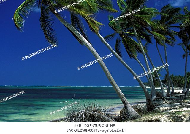 A dream beach on the peninsula Samana in the north-east of the island Dominican Republic in the Caribbean