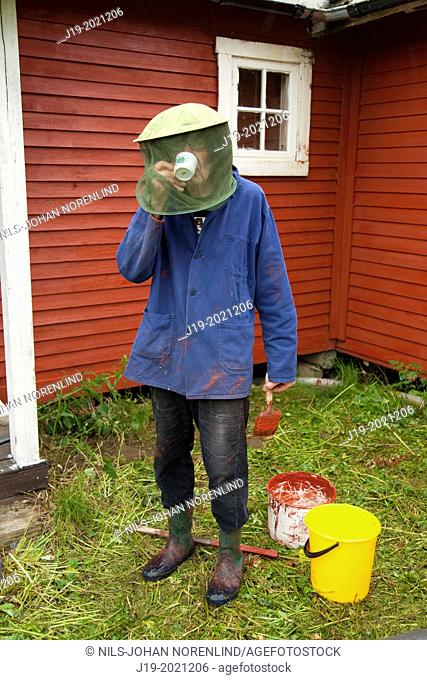 Drinking coffee with moscito hat, painting the Summer cottage north of Sweden