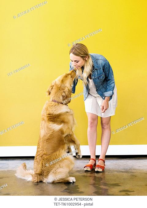 Young woman playing with golden retriever