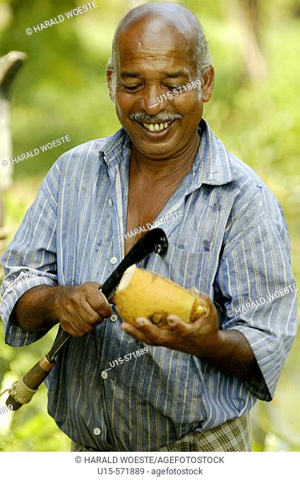 Smiling indian man opening a coconut with a large slasher (knife). Backwaters, Kerala, India 2005