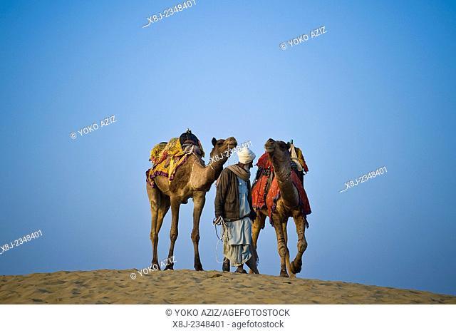 India, Rajasthan, Jaisalmer, Camel Ride