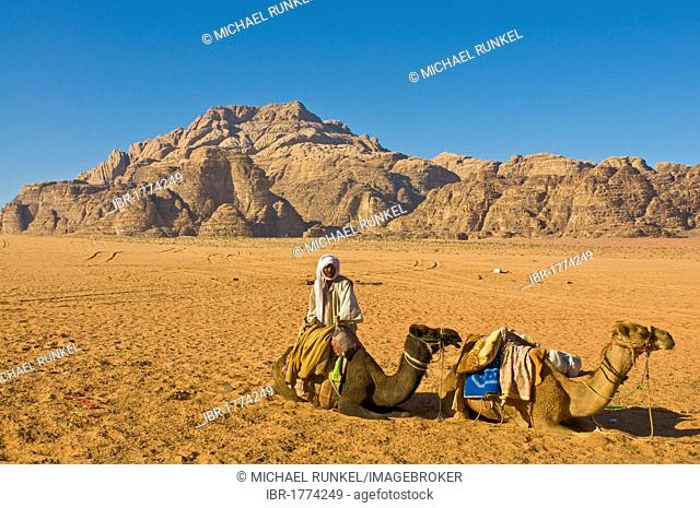Bedouin with his dromedaries in Wadi Rum, Jordan, Western Asia