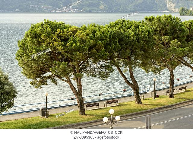 cityscape with walk and trees on lakeside, shot in bright summer light on Sebino lake at Lovere, Bergamo, Lombardy, Italy