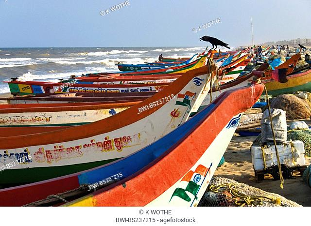 colourful fishing boats on sand beach, India, Tamil Nadu, Marina Beach, Chennai