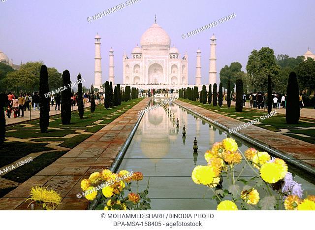 Taj Mahal ; Agra ; Uttar Pradesh ; India