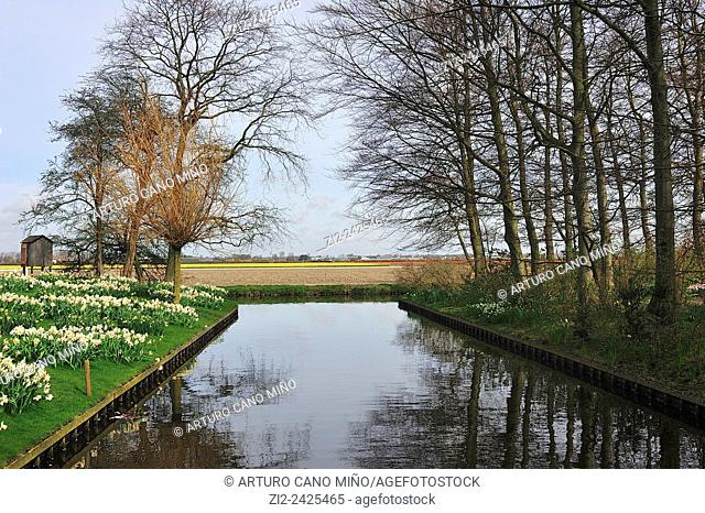 Canal in the park. Keukenhof, Lisse, The Netherlands