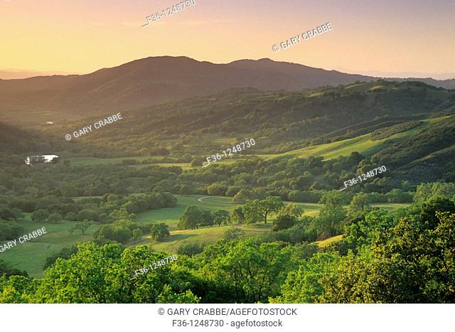 Sunset over oak trees and valley in spring, along Adelaida Road, Paso Robles, San Luis Obispo County, California