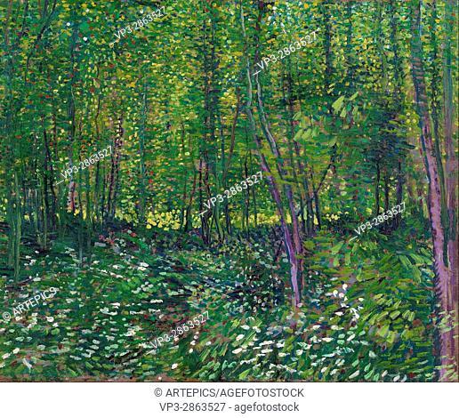 Vincent van Gogh - Trees and undergrowth - Van Gogh Museum, Amsterdam