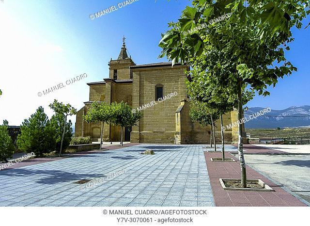 View of the town of Navaridas. Rioja Alavesa, Alava, Basque Country, Spain