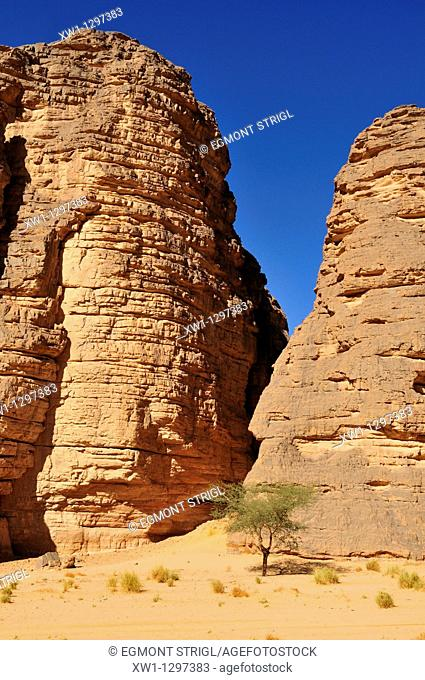 sandstone rock formation at Tikobaouine, Tassili n' Ajjer National Park, Unesco World Heritage Site, Wilaya Illizi, Algeria, Sahara, North Africa