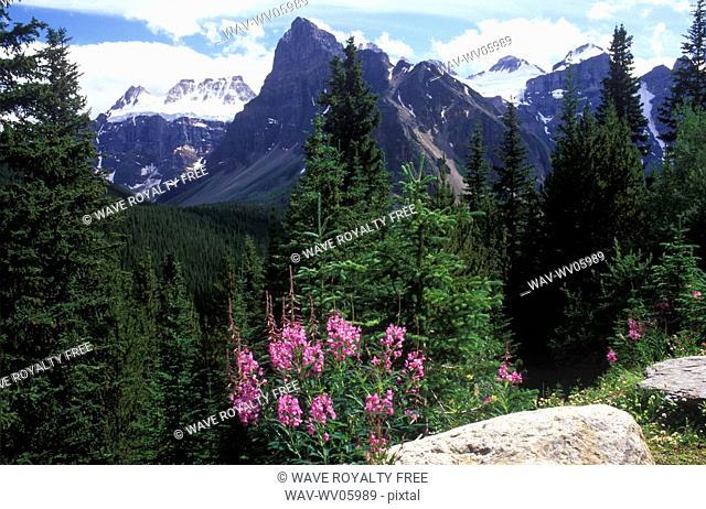 Mountain Scenery, Banff National Park, Alberta, Canada