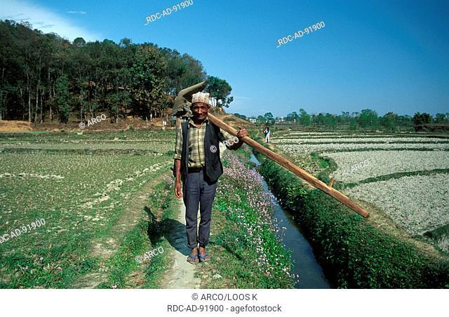 Farmer at field, Pokhara-Chhorepatan, Nepal