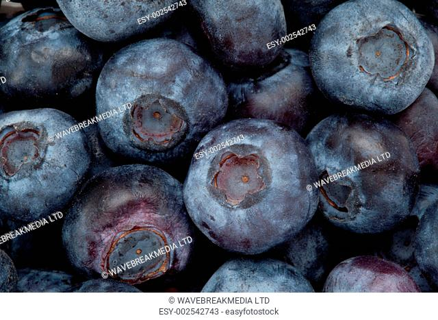 Heap of blueberry against in high angle view