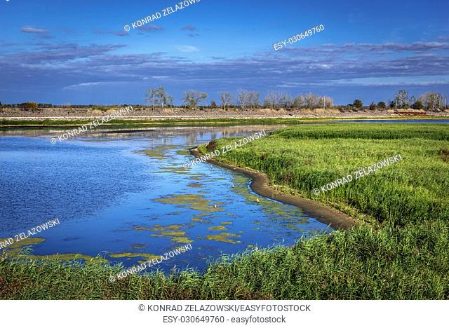 Cooling lake of Chernobyl Nuclear Power Plant in Zone of Alienation, 30 km radius exclusion area around the nuclear reactor disaster in Ukraine