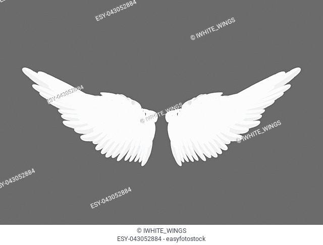 Realistic elegant white angel wings on grey background. Love, lightness, romantic, innocence and freedom symbol. Vector illustration