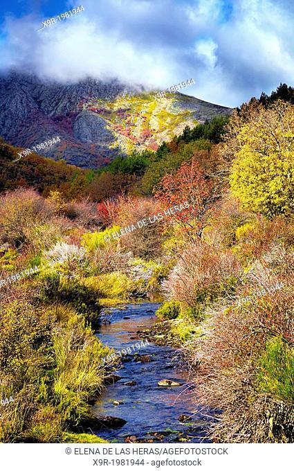 "Lillas river in autumn at the Beech wood """"Hayedo de Tejera Negra"""" Nature Reserve, in the township of Cantalojas. Sierra de Ayllon"