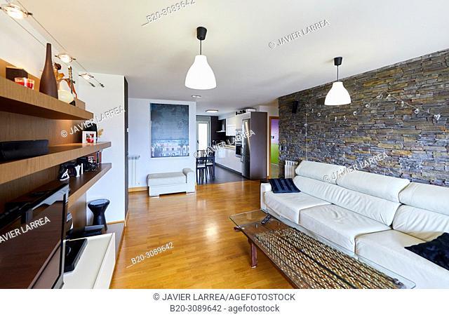 Living room, Apartment housing, Donostia, San Sebastian, Gipuzkoa, Basque Country, Spain, Europe
