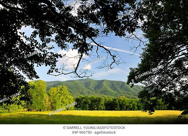 A scenic view of Cades Cove in Great Smoky Mountains National Park, Tennessee, USA