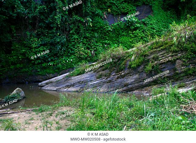 The waters of a mountain spring locally known as 'Rijon Jharna' flowing through a creek in Khagrachari, one of the hill districts under Chittagong division