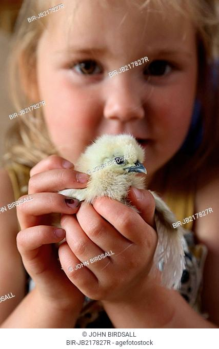 Chick being held by young girl