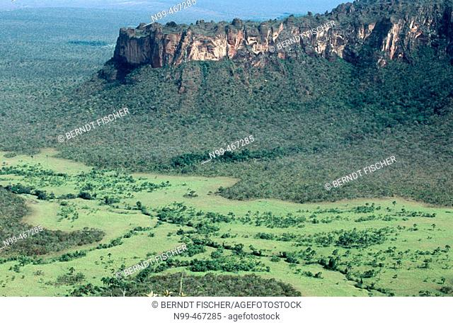 Sandstones cliffs primeval dry forest and open grassland. Chapada do Guimaraes National Park. Mato Grosso. Brazil