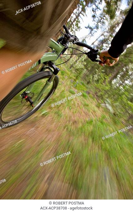 View of a person biking showing the speed through the forest in Whitehorse