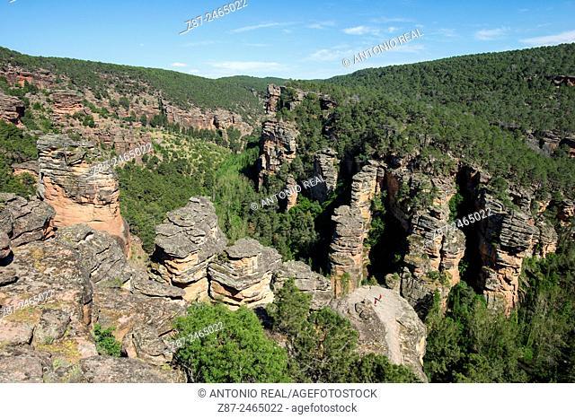 River Gallo gorge, Ventosa, Parque Natural del Alto Tajo, Guadalajara province, Castilla-La Mancha, Spain