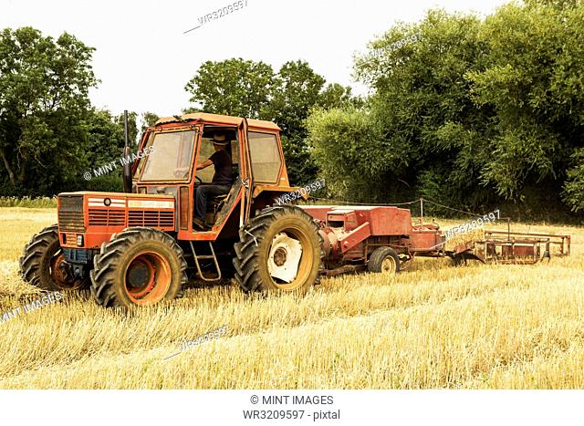 Tractor and straw baler in wheat field, farmer baling straw