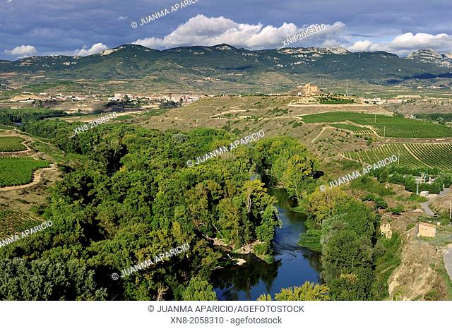 San Vicente De La Sonsierra,