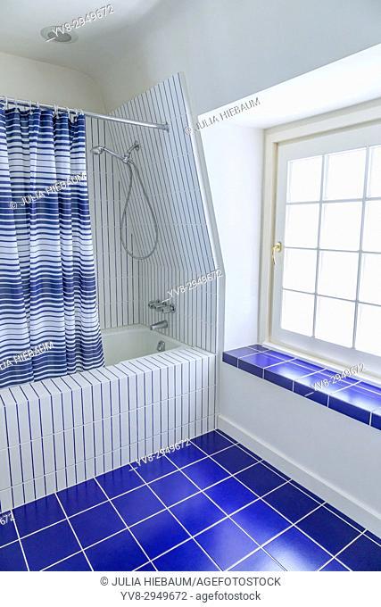 Blue and white tiled bathroom