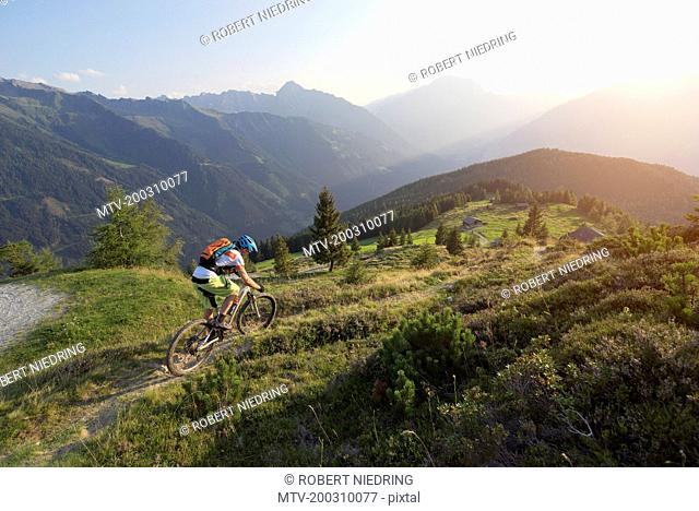 Mountain biker riding on uphill in alpine landscape during sunset, Zillertal, Tyrol, Austria