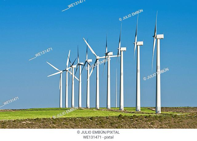 field of wind generators against blue sky