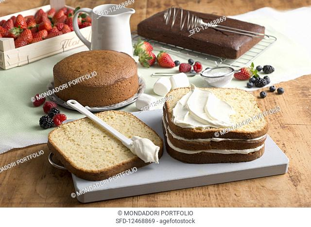 Various types of cakes for decorating