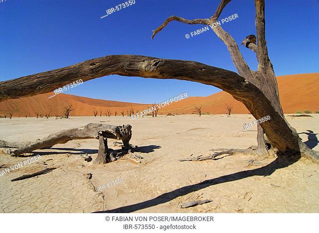 Dead trees at Deadvlei, Namib Naukluft Parc, Namibia