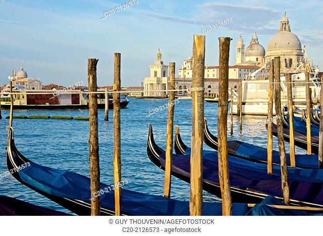 Gondolas parking, with Santa Maria della Salute church in the background, Venice, Italy