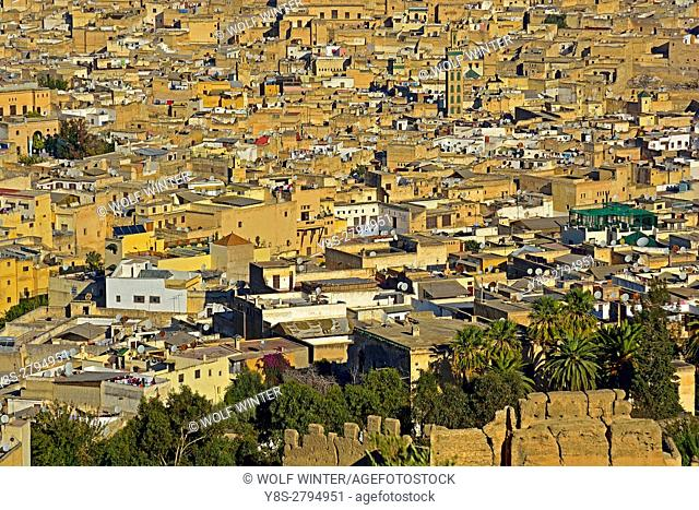 City of Fes seen from the Fortress Borj, Middle Atlas, Morocco