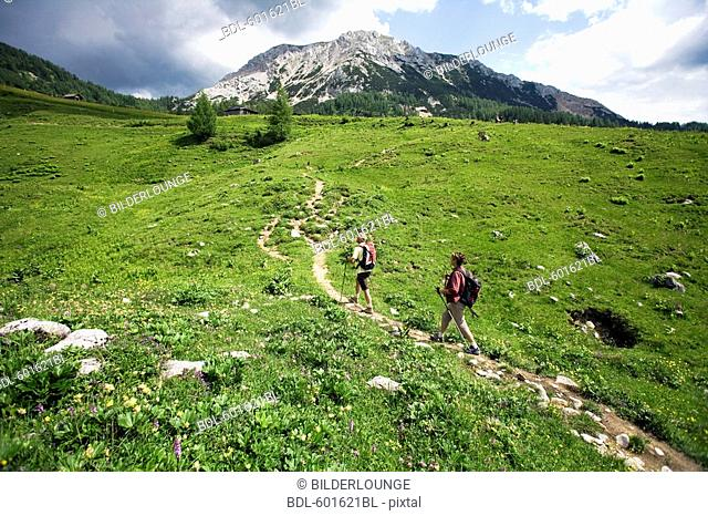 mature couple doing nordic walking in the mountains