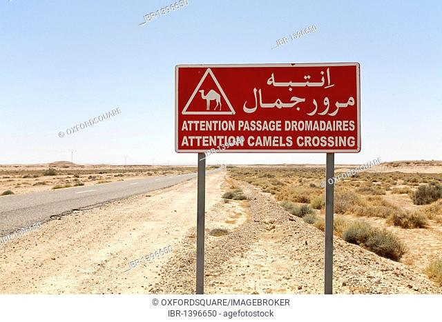 Camel crossing traffic sign in the Sahara, Africa