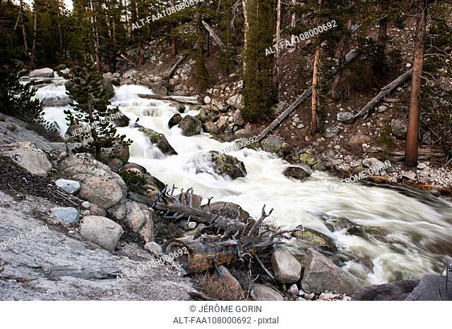 Stream flowing over rocks, Yosemite National Park, California, USA