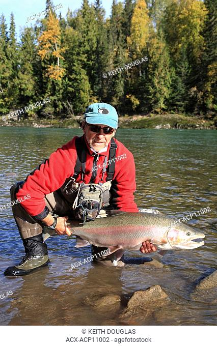 Angler with steelhead prior to release, Bulkley river, British Columbia, Canada