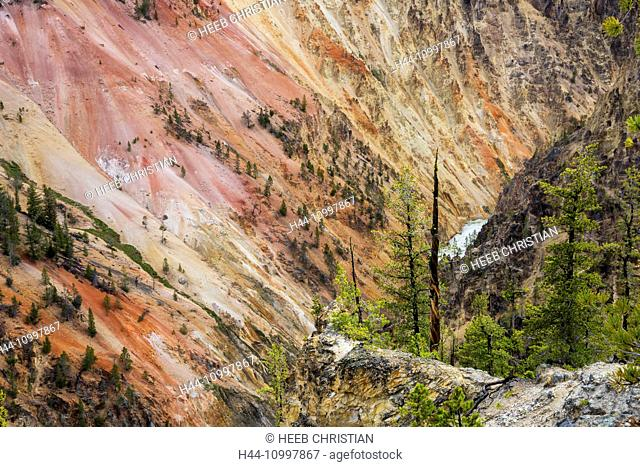 USA, Rocky Mountains, Wyoming, Yellowstone, National Park, UNESCO, World Heritage, Lower Falls of the Yellowstone river