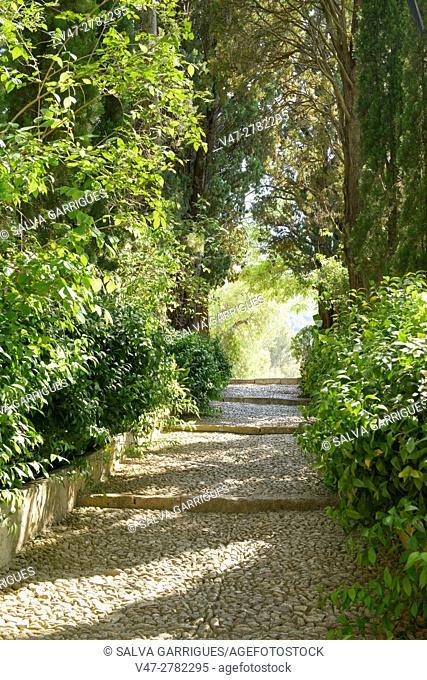 Road in the gardens, Vallada, Valencia, Spain, Europe