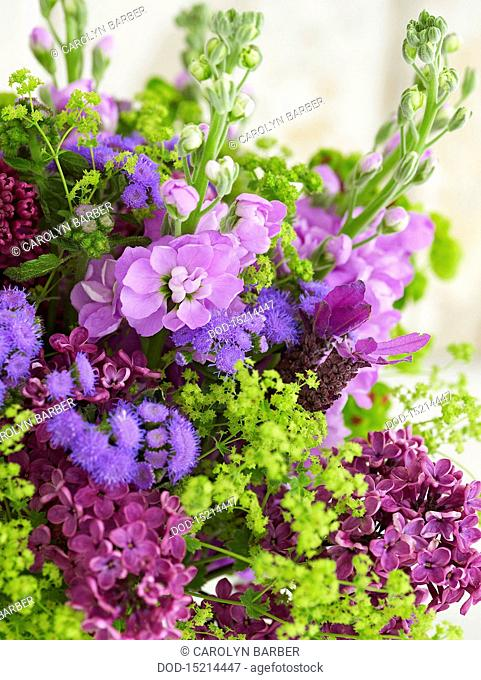 Bunch of flowers including stocks, alchemilla, lavender, euphorbia, ageratum, lilac, close-up