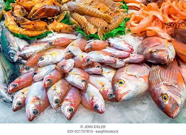 Leckerer Fisch und Meeresfrüchte