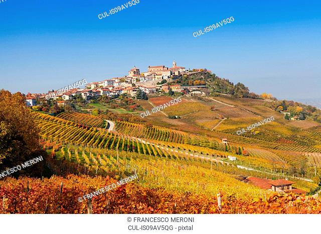 View of autumn vineyards and hill village, Langhe, Piedmont, Italy