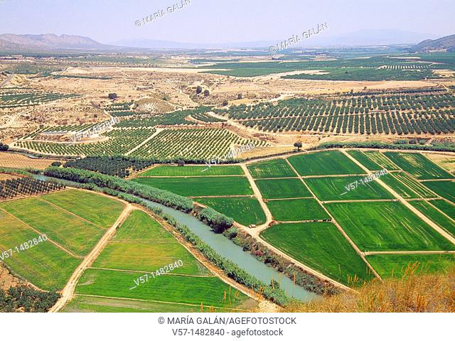 Cultivation fields and river Segura, aerial view. Jumilla, Murcia province, Spain