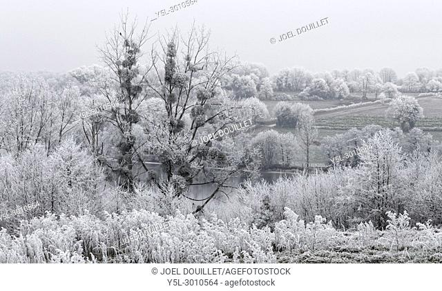White frost on the countryside in winter, wooded banks of the river Mayenne (North Mayenne, Loire country, France)