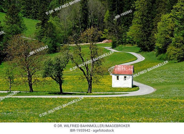 Little chapel on the roadside at Grund, near Miesbach, Upper Bavaria, Bavaria, Germany, Europe